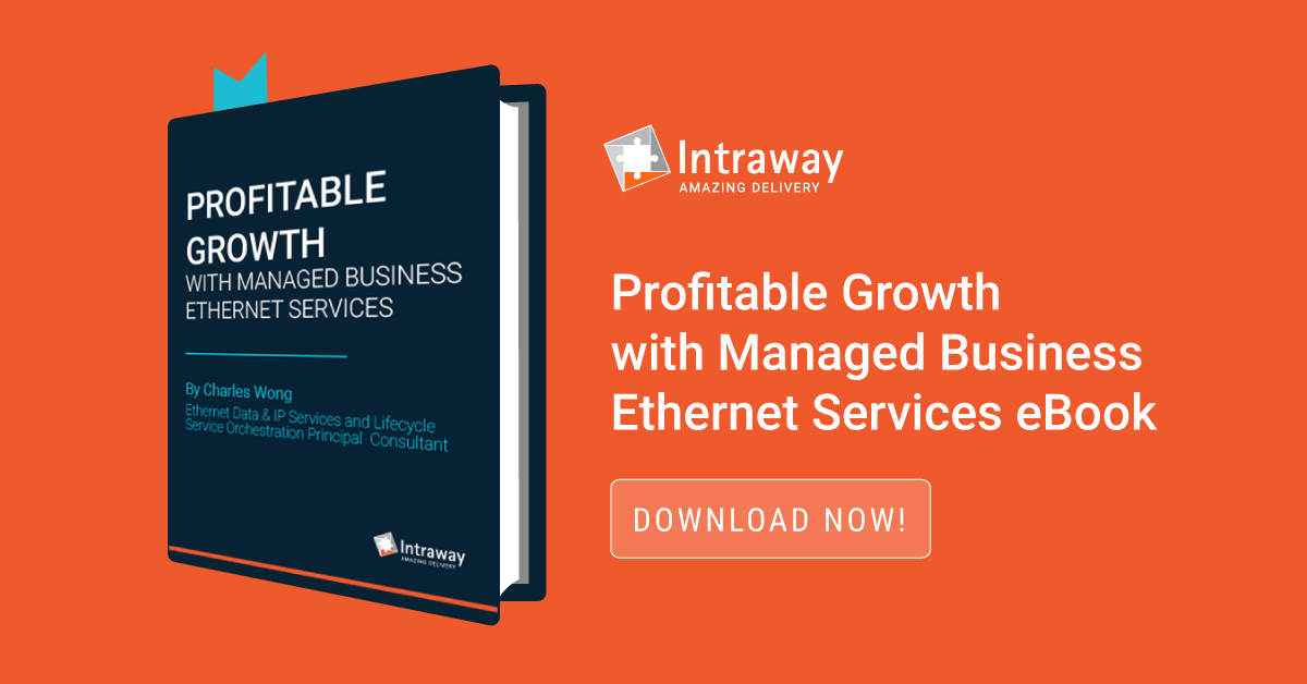 Profitable Growth with Managed Business Ethernet Services eBook – Download now!
